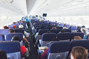 Os cães podem ser levados na cabine da aeronave – Descubra tudo agora